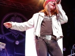 Hairball Photo Gallery